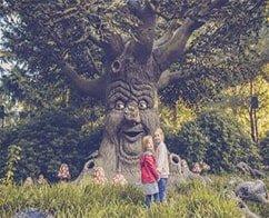 Visit to Efteling Theme Park with Transportation