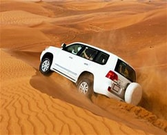 Evening Desert Safari with BBQ Dinner and Hotel Transfers
