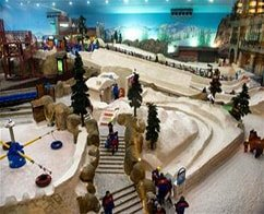Ski Dubai Polar Pass with Ticket & Transfer