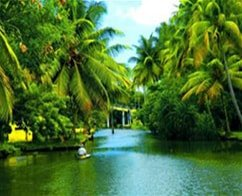 Kerala Special Interest Tour: Ex-Cochin (10 Nights/11 Days)