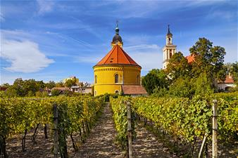 Small Carpathian Wine Tour from Bratislava