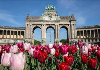 Super Saver: Brussels City Tour, Antwerp and Ghent & Bruges Tour