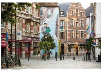 Grand City Tour of Brussels