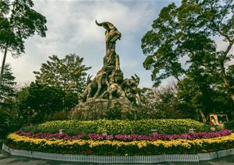Day Tour of Guangzhou City Highlights