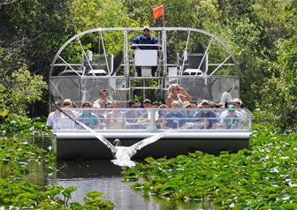 Everglades Airboat Tour with Biscayne Bay Sightseeing Cruise