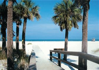 Clearwater Beach Trip with Lunch