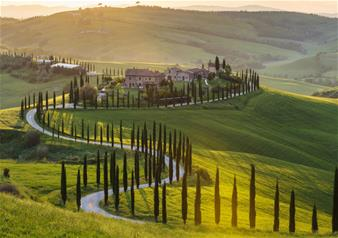 Small-Group Wine Tour of Brunello Di Montalcino from Siena