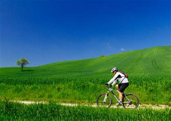 Full-Day Chianti Experience on E-Bike from Siena