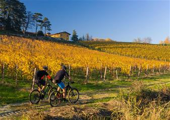 Half-Day E-Bike Tour of the Amarone Countryside