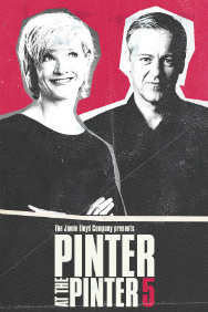 London Theatre Tickets - Pinter 5: The Room / Victoria Station / Family Voices