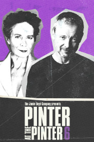 London Theatre Tickets - Pinter 6: Party Time / Celebration