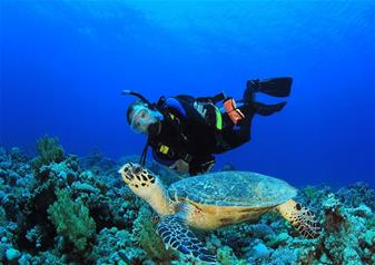 Half Day Diving Activity at Galle in Sri Lanka with Hotel Transfers Service – Afternoon Tour