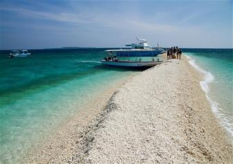 Half Day Tour of Iriomote and Yubu Island by Ferry Service