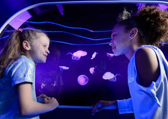 SEA LIFE London Aquarium Advance Ticket with Behind the Scenes Tour