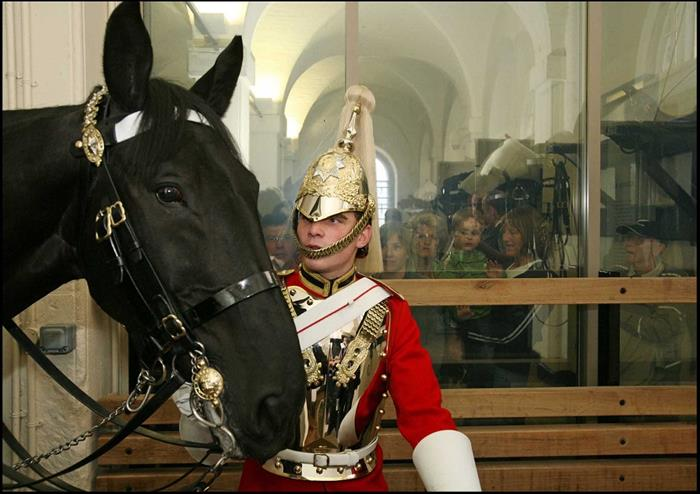 Household Cavalry Museum Golden Tours